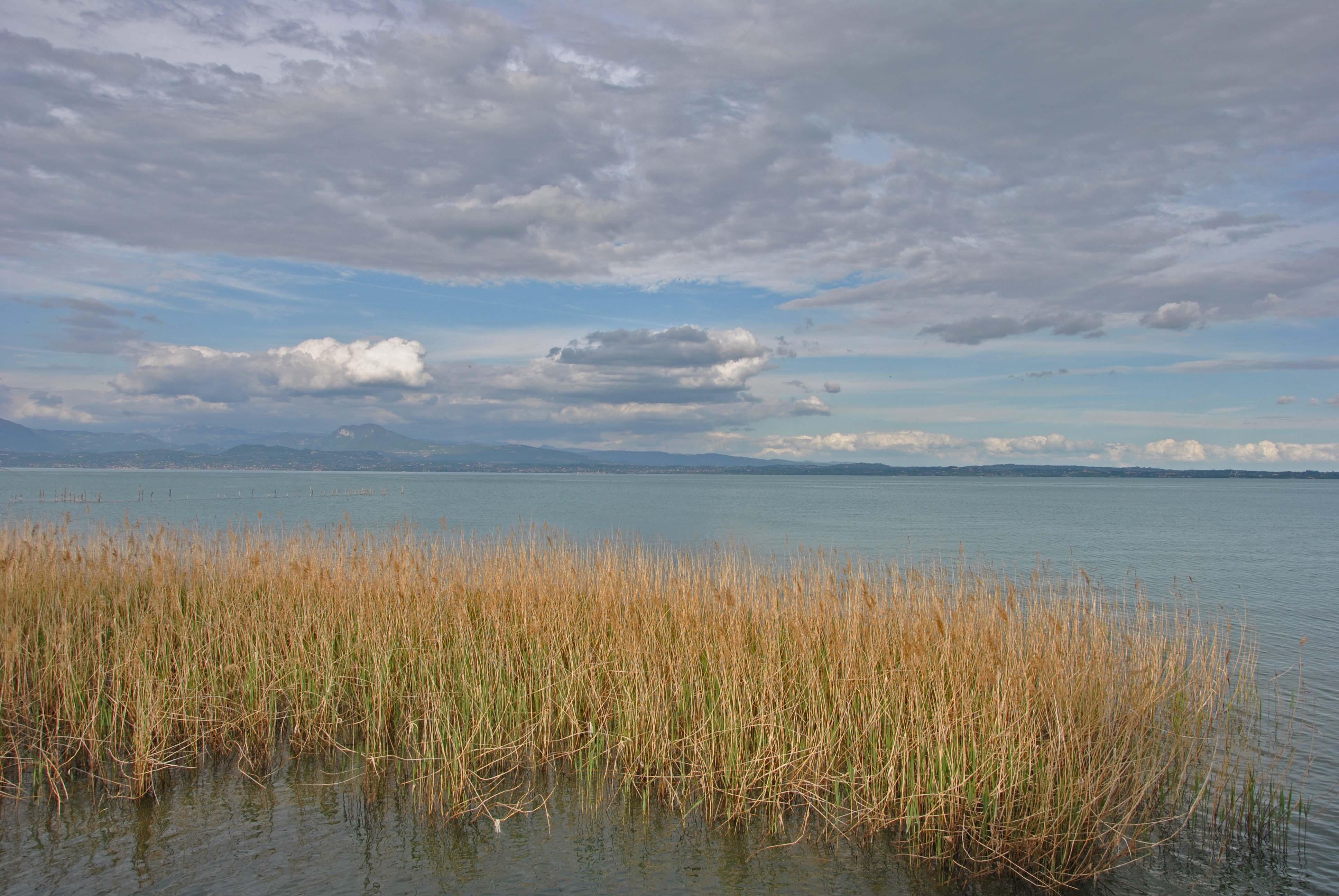 Cicloviaggio lago di Garda_14